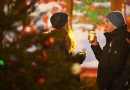 4 знака зодиака, которые встретят любовь в новогоднюю ночь