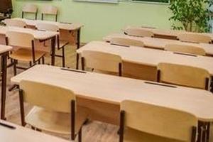 Родители и учителя разочаровались в дистанционном обучении