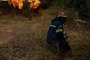 Грецию охватили пожары