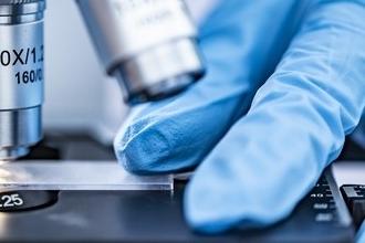 Вирусологи предупреждают об угрозе мутаций коронавируса
