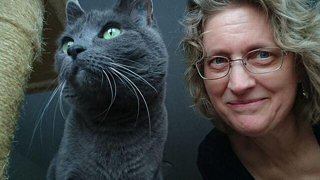 Как кошки защищают нашу судьбу