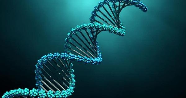 Обнаружена самая древняя ДНКвмире
