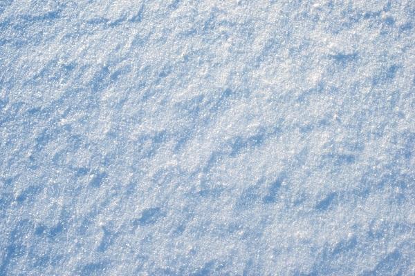 Россиянин продегустировал свежий снег вСочи — Рамблер/путешествия