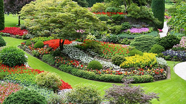 5 советов для создания сада по фэншуй