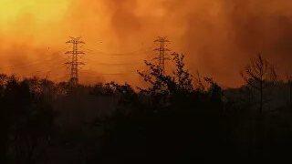 Посольство России сообщило о ситуации с пожарами в Турции