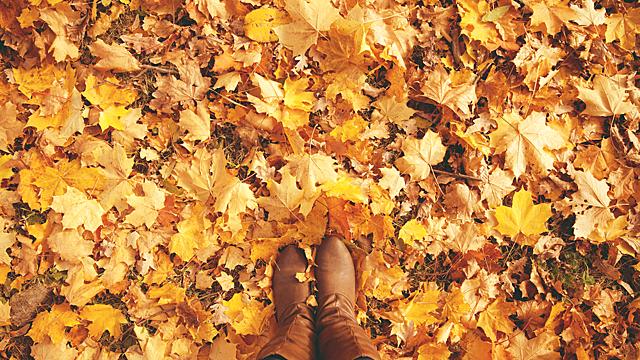 Прогноз Ба Цзы на октябрь: пора заземляться