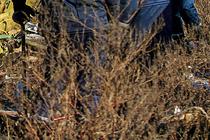 «Обвинили Россию»: MH17 потерпел крушение в Донбассе 7 лет назад