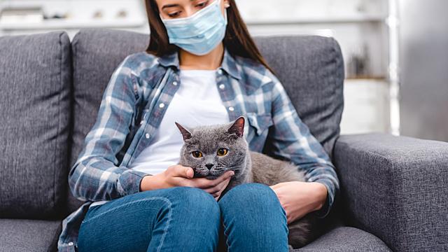 Психолог дал советы по борьбе с тревогой во время пандемии