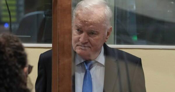 «Палач» или«герой»: сербы разошлись вомнении оМладиче