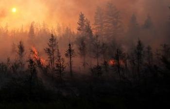 Дым от пожаров в Якутии достиг Аляски