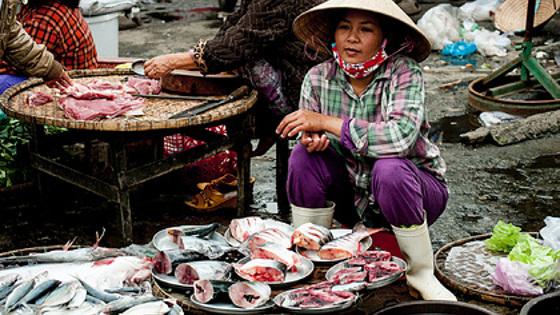 Мир оказался под угрозой исчезновения морепродуктов