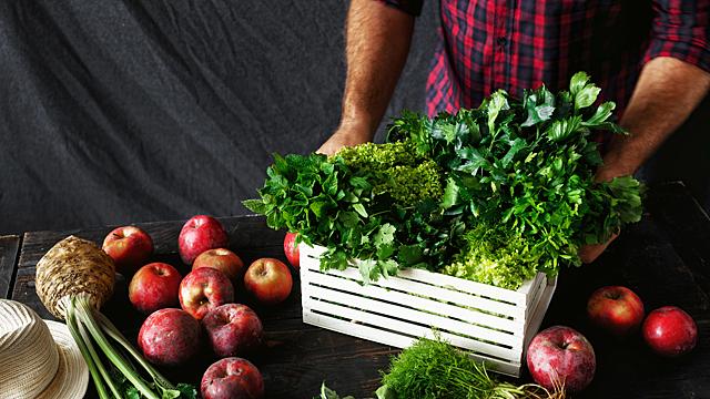 Как вырастить хороший урожай в августе