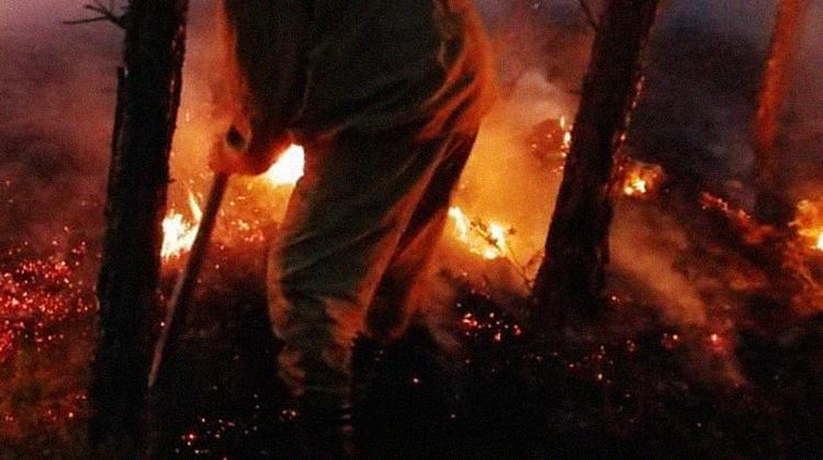 NYT: Пожары в Якутии грозят ускорением глобального потепления