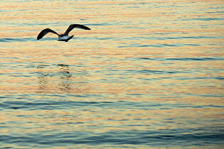 Какое теплое море выбрать в июне в России