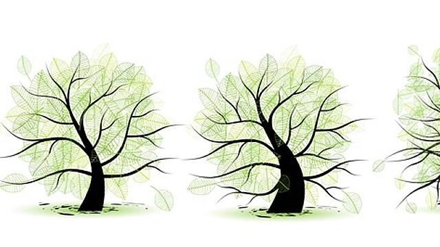 Нумерология: четыре возрастных этапа