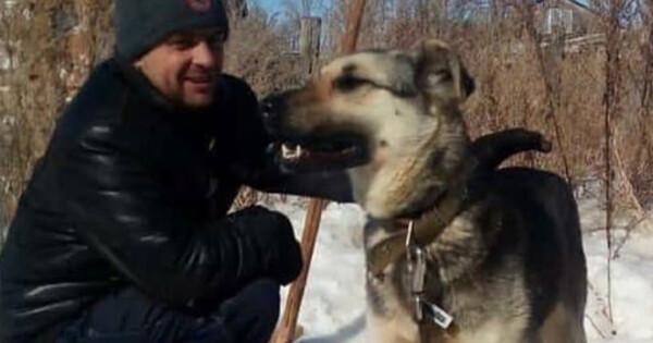 «Мынеедим собак»: татарстанец будет судиться сзоозащитницей заклевету