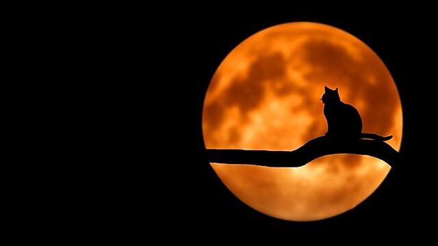 Астролог рассказала, чего ждать от «кровавой Луны»